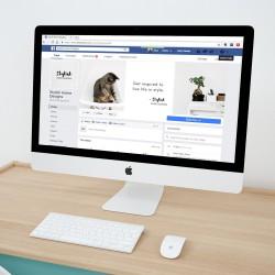 Beispiel Facebookseite