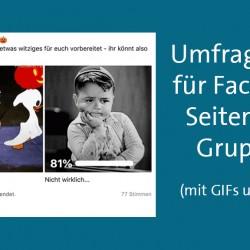 Umfrage Tool Facebook
